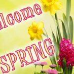 Chelmsford Public Schools Byam Newsletter Mar. 19